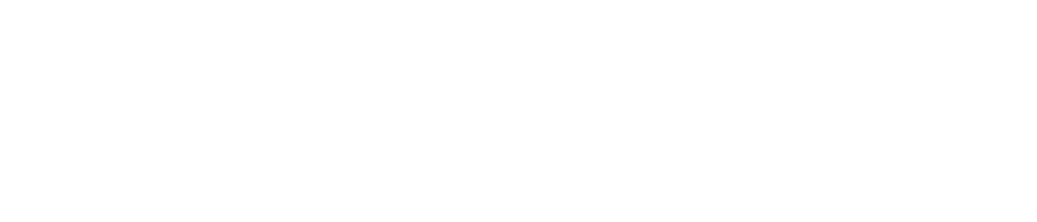 DreamWeek San Antonio logo - reverse